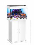 Магазин аквариумов Seaprice в Москве. Аквариумы, террариумы, оборудование для аквариумов, рыбки Москва