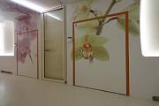 Панели HPL для интерьеров чистых помещений и клиник, отделка пластиком ДБСП оперблоков, КМ1 Москва