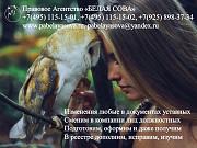 Регистрация изменений в уставных документах, в ЕГРЮЛ, реорганизация. Москва