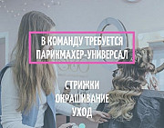 Парикмахер-универсал Самара