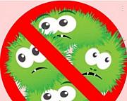 Уничтожение насекомых Магнитогорск