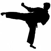 Детский тренер по каратэ Kyokushinkai ищет работу в Измайлово. Москва