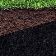 Поставка плодородного грунта для озеленения Москва