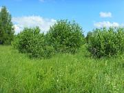 Земельный участок 40, 0 соток в дер. Моншино Калязинского района Тверской области Калязин