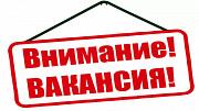 Администратор в соц. сети Владивосток