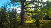 Шикарный участок на опушке соснового леса, расширение до 40 соток Палкино