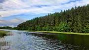 Чудесный земельный участок 54 сотки у живописного озера под Псковскими Печорами Псков