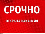 Менеджер-куратор. Тольятти