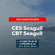 Помощь и подготовка к сдаче Seagull CES, Seagull CBT и других тестов для моряков. Москва