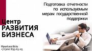 Подготовка отчетности по гос поддержки Тольятти