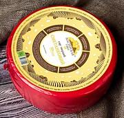 Сметанковый, твёрдый сыр, 50% жирности Днепропетровск