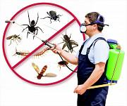 Товары для борьбы с насекомыми и грызунами. Москва