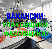 Требуется фасовщица/упаковщица Санкт-Петербург